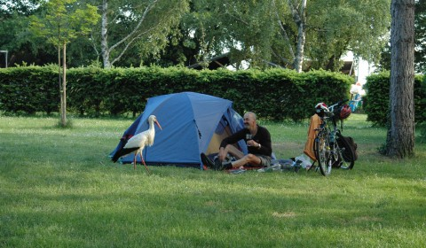 Cyclists accomodation